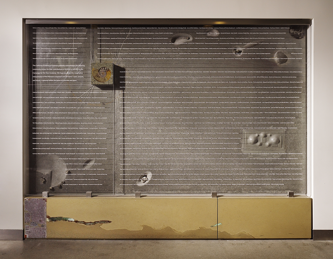 California Academy of Sciences Donor Wall | CHENG Design